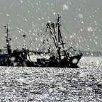 Fischkutter vor Norderney im Regen